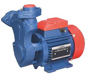 Crompton Water Pump Mini Starplus Iv (0.13hp)