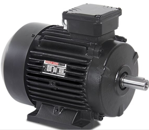 Havells 3 Phase 125 Hp 2 Pole Foot Mount Induction Motor Mhcetts20090