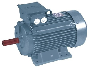 Oswal 3 Phase 0.2 Hp 12 Pole Foot Mount Induction Motor Om-93a-Fom