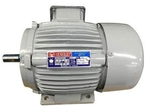 Eagle 3 Phase 0.5 Hp 6 Pole Foot Mounted Induction Motor
