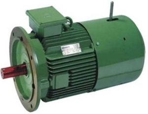 Hindustan Electric Motors 2fc1 166-0803 Foot Mounting 3 Phase Crane Duty Motor