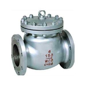 Techno Stainless Steel Swing Type Check Valve - Size 1/2 Inch