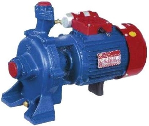 Crompton Domestic Monoblock Pump Tmep2 (2 Hp)
