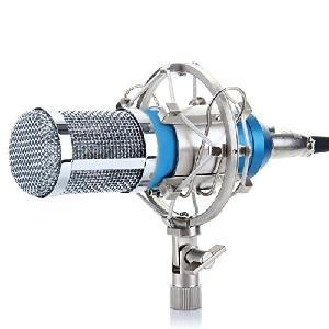Sound King Professional Condenser Studio Recording Microphone Sk-800